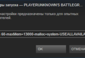 Параметры запуска PlayerUnknown's Battlegrounds